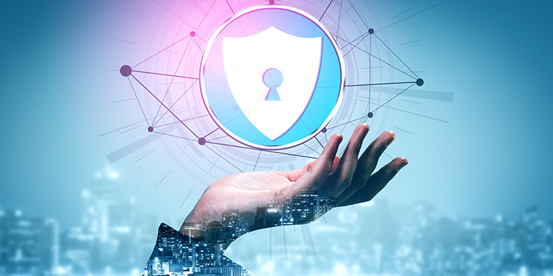 Meeting the Cyber Security Challenge - A Virtual Learning Journey 2021